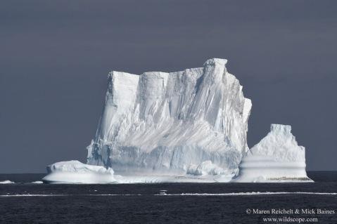 Iceberg with penguins-MAR_5909_DxO copy
